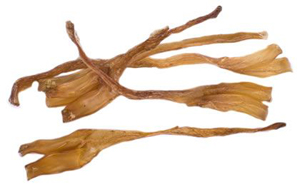 how to cook beef tendons for dogs