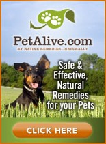 pet alive, natural remedies for pets