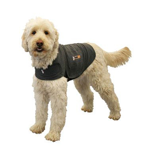 Pet Safety Products And Medical Supplies To Protect Your Pet
